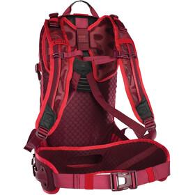 ION Transom 16 Plecak czerwony
